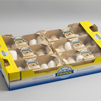 mushroom - Flowfresh film and carton tray