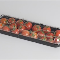 tomatoes - clamshell