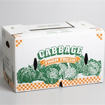 cabbage - net bag