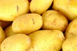 Packaging film tailored to reduce greening and sprouting of potatoes